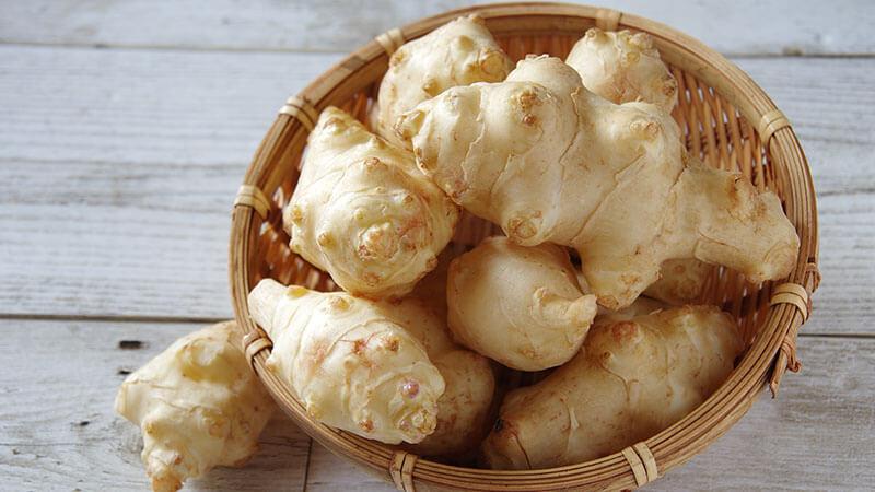 【ちょっとした雑学】生命力が強すぎる菊芋歴史